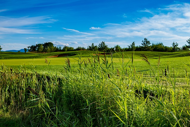 Expert Advice For Improving Your Golf Game